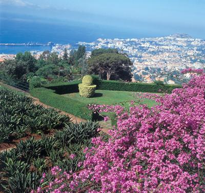 Der Botanische Garten Von Madeira